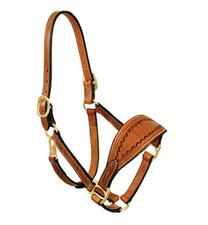 Designer Bronc Noseband Leather Halter
