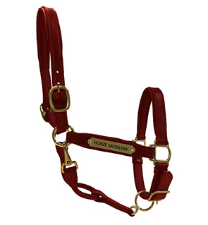 Leather Halter with Nameplate