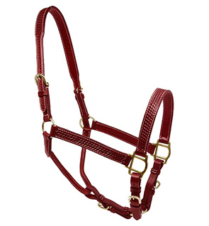 Best Quality Fancy Stitched Leather Halter