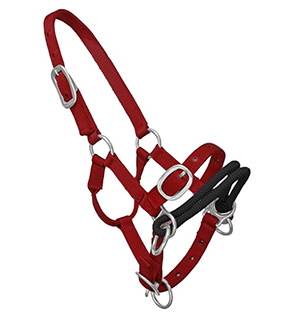 Nylon Horse Training Halter