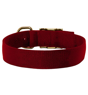 Heavy Duty Custom Nylon Dog Collars