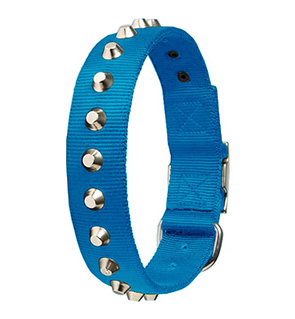 Nylon Dog Collar With Studs