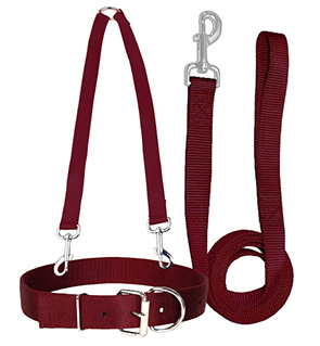 1 Inch Nylon Combo Collar, Coupler And Lead