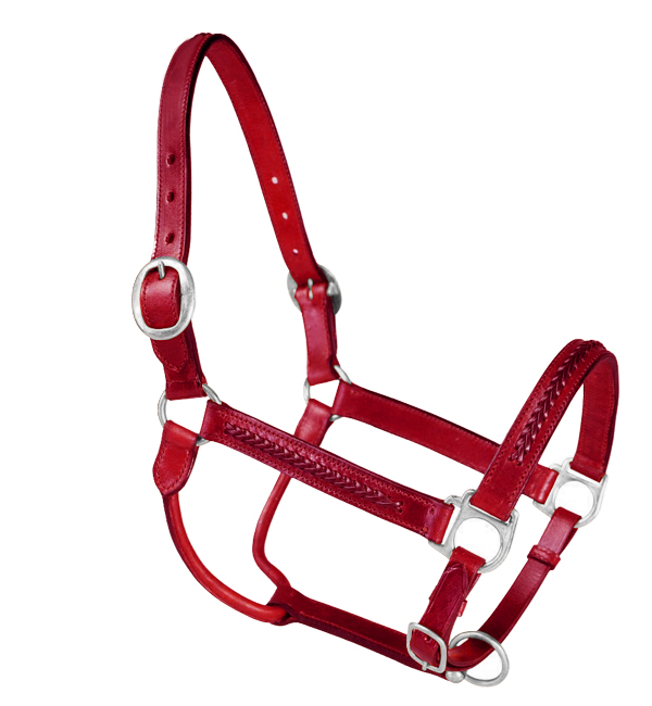 Braided Leather Horse Halter