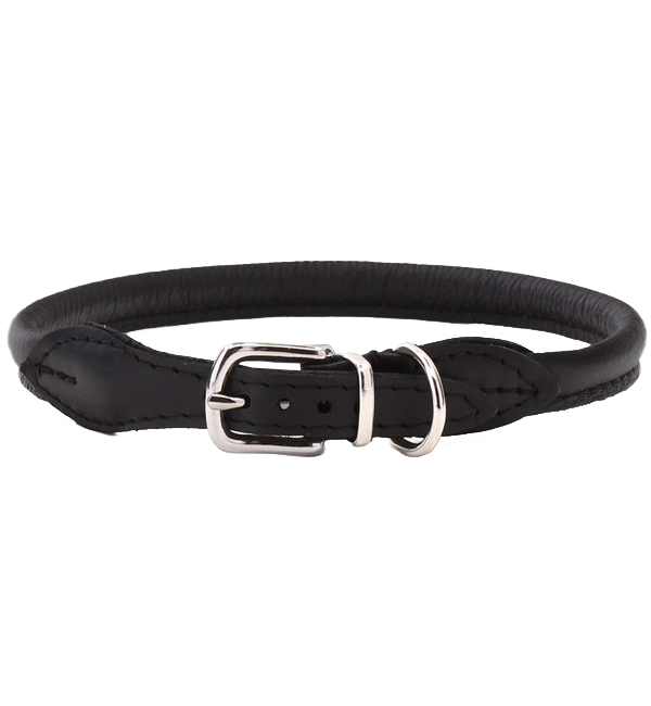 Fancy Leather Dog Collar
