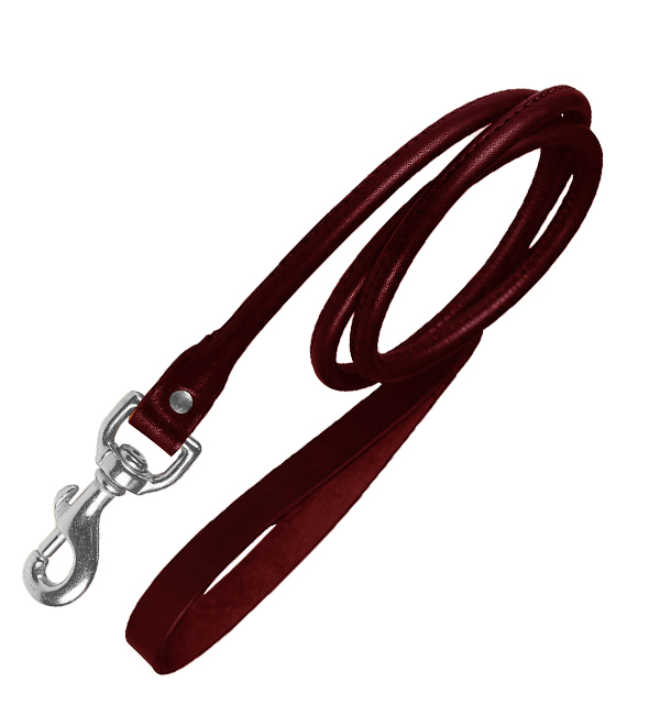 Fancy Round Leather Dog Leash