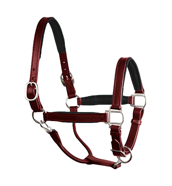 Fancy Stitched Padded Leather Halter