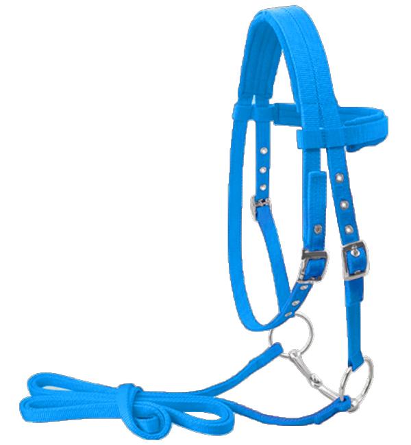 Adjustable Nylon Training Horse Bridle