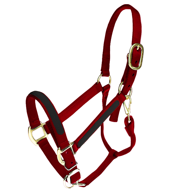 Fancy Stitched Colorful Nylon Horse halter