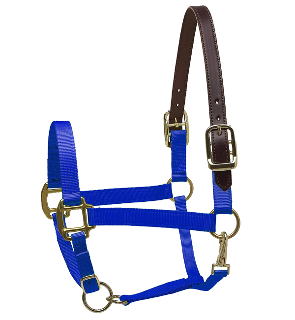 Nylon Halter with Brown Leather Crown