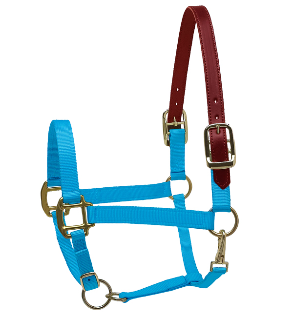 Leather Crown Adjustable Nylon Halter