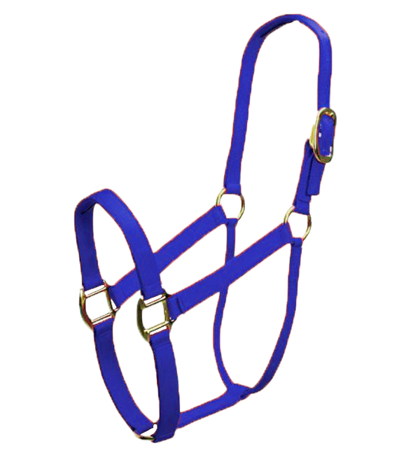 Custom Comfortable Nylon Horse Halter